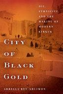 City of Black Gold ebook