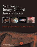 Veterinary Image-Guided Interventions