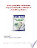 Traffic Exchanges Profit Report