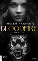 Blood Destiny - Bloodfire ebook