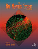 The Rat Nervous System