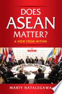 Does ASEAN Matter