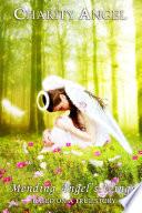 Mending Angel S Wings Book
