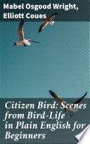 Citizen Bird  Scenes from Bird Life in Plain English for Beginners