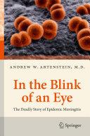 In the Blink of an Eye ebook