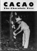Cacao, the Chocolate Tree