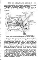 Strona 117