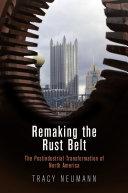 Remaking the Rust Belt ebook