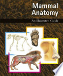 """Mammal Anatomy: An Illustrated Guide"" by Marshall Cavendish Corporation"