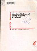 Vocational Training of Young Migrants in Denmark