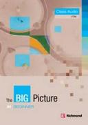 The Big Picture Beginner Class Audio Cds Book PDF