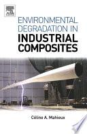 Environmental Degradation of Industrial Composites