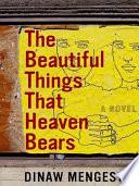 The Beautiful Things That Heaven Bears Book PDF
