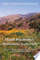 Depth Psychology Meditations In The Field