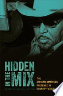 Hidden in the Mix