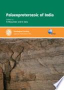 Palaeoproterozoic of India