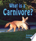What is a Carnivore