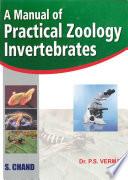 A Manual of Practical Zoology: INVERTEBRATES