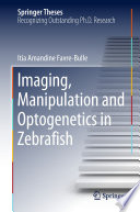 Imaging  Manipulation and Optogenetics in Zebrafish