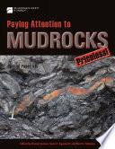 Paying Attention to Mudrocks: Priceless!
