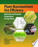 Plant Macronutrient Use Efficiency