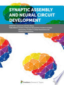 Synaptic Assembly and Neural Circuit Development