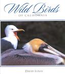 Wild Birds of California