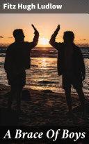 A Brace Of Boys Pdf/ePub eBook