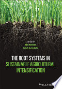 The Root Systems in Sustainable Agricultural Intensification