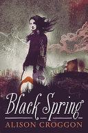 Black Spring ebook
