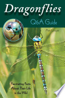 Dragonflies  Q A Guide Book