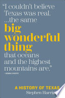 Big Wonderful Thing PDF