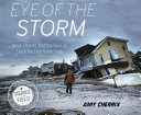 Pdf Eye of the Storm