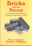 Bricks Without Straw Book