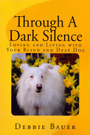 Through a Dark Silence