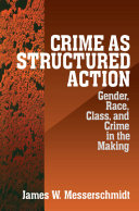 Crime as Structured Action Pdf/ePub eBook