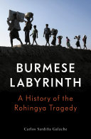 Pdf The Burmese Labyrinth
