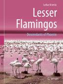 Lesser Flamingos Pdf/ePub eBook