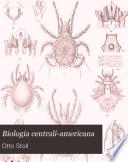 Arachnida Acaridea