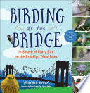 Birding at the Bridge