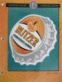 Blitzer   Intermediate Algebra for College Students Book