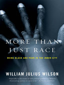 More than Just Race  Being Black and Poor in the Inner City  Issues of Our Time