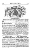 Էջ 57