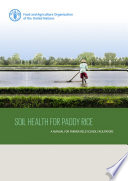 Soil health for paddy rice