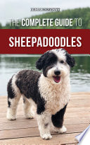 The Complete Guide to Sheepadoodles