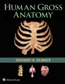 Human Gross Anatomy Book PDF