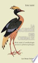 La Sagesse Des Oiseaux