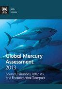 Global Mercury Assessment 2013