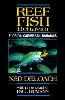 Reef Fish Behavior