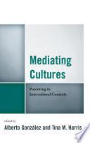 Mediating Cultures